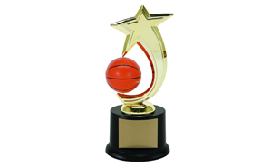 Basketball Spinning Achievement Award: 8""