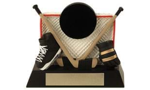 Hockey Net Sculpture - Large