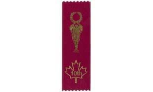 Stock Tenth Place Victory Ribbon