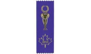 Stock Second Place Victory Ribbon